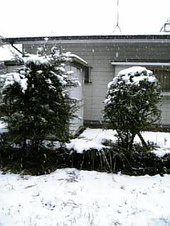 200601211515102