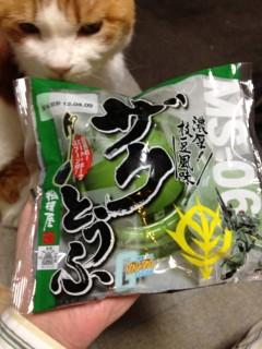 20120328_zaku-touhu0