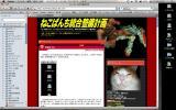 Firefox3b4