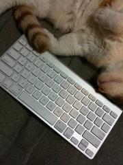 Apple キーボード