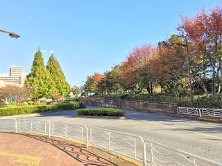 20141114_moumaku0