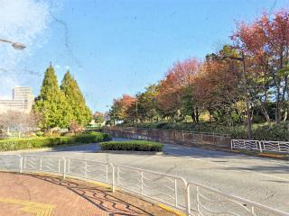 20141114_moumaku2